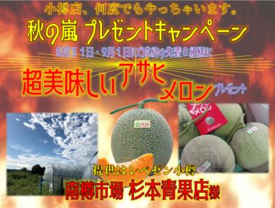 8.9月の特別展示会!