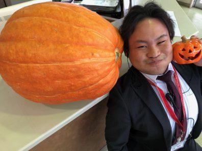 北19条店 今週末も【お化けかぼちゃ】と【なぜか壁が・・】