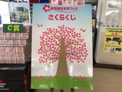 桜の花びらに想いをこめて・・・