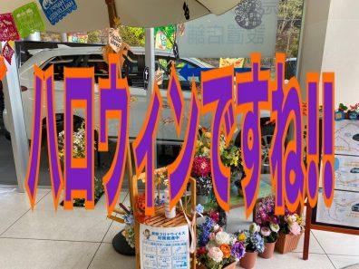 🦇ハロウィン小樽店🎃