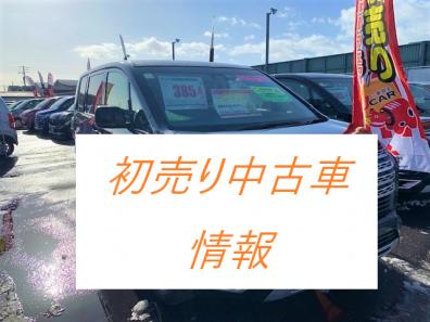 苫小牧店【初売り中のD:5祭り】