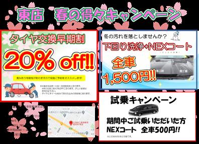 東店 🌸春の得々キャンペーン!?🌸