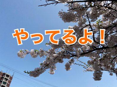 小樽店的初夏のRe:スタート!