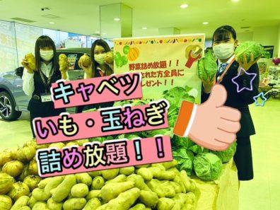 苫小牧店【今日から!!】大決算フェア